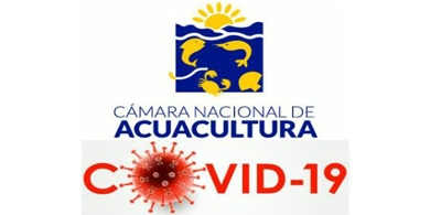 Ecuadorian shrimp exporting establishments strengthened risk prevention control measures for COVID-19