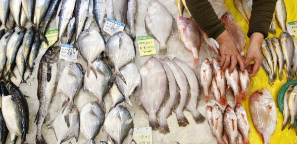 Most seafood imported from third countries comply with microbiological criteria