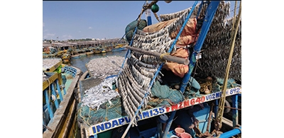 Two upcoming events on food security, nutrition and small-scale fisheries