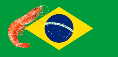 Brazil updates zoosanitary requirements for shrimp imports