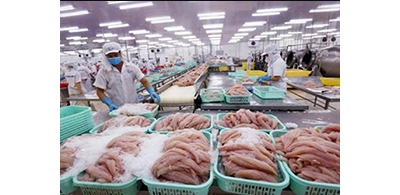 Indian seafood exporters distressed over tightening Chinese market